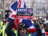 Rapporteur Pieter Omtzigt: 'Brexit gaat chaotisch verlopen'