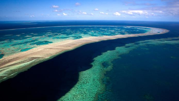 Vue aérienne sur la Grande barrière de corail dans le Queensland, en Australie.