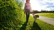 Sint-Amelberga verwacht 1.000 stappers op wandeldag