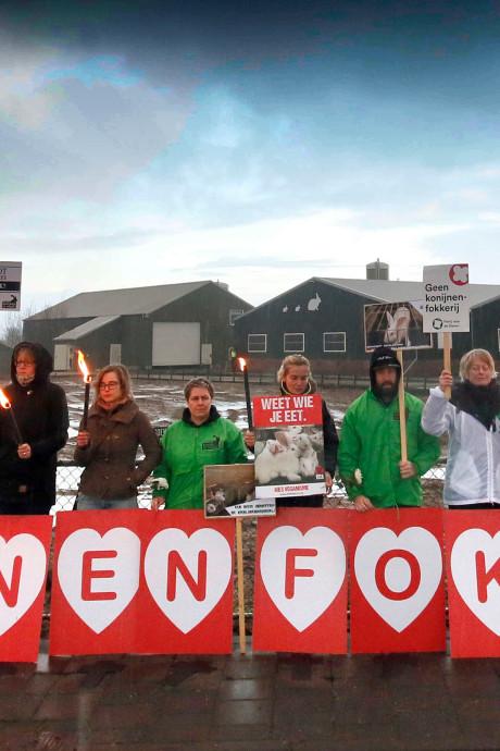 Opnieuw demonstratie bij konijnenfokkerij in Leerbroek