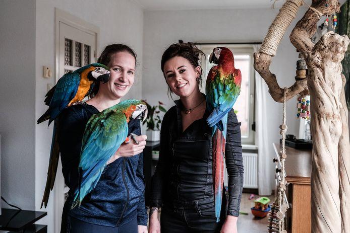 Debbie Kleinreesink (links) en haar schoonzus Kim met ara's (v.l.n.r.) Lizzy (blauw geel), Zuma (blauw groen) en Kaya (rood).