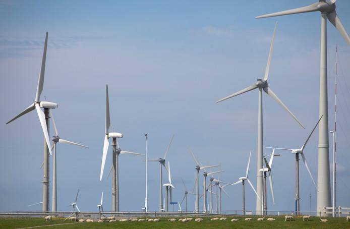 2009-08-10 12:36:46 EEMSHAVEN - Windmolenpark. ANP XTRA NILS VAN HOUTS BD pag3