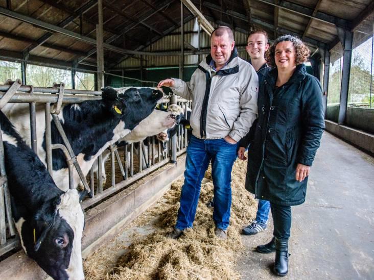 Koeientuin als antwoord op stikstof: in Heukelom wil het er maar niet van komen