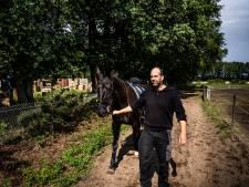De paardentwist van Wolfheze: 'Je kunt een gewonnen zaak dus toch verliezen'