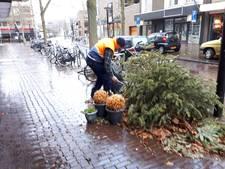 Column: Levensgevaarlijke kerstbomen, dappere fietsers en een hardwerkende 'vuilnisprikker'