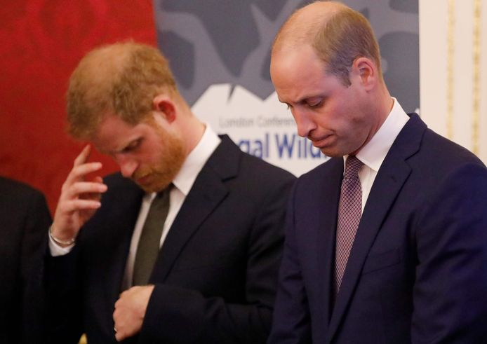 Prins William en zijn broer prins Harry