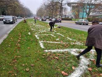 VUB-studenten voeren actie voor Djalali aan Iraanse ambassade
