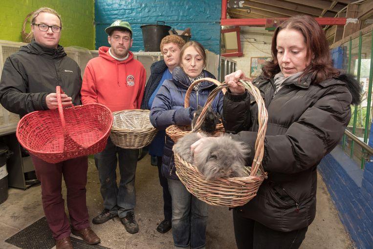 Coördinator Robin Ronsyn en de medewerkers van De Kleppe zijn zwaar aangeslagen door de diefstal van de therapiekonijnen.