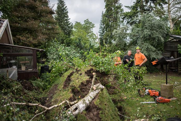 Stormschade in Rheden en omgeving.