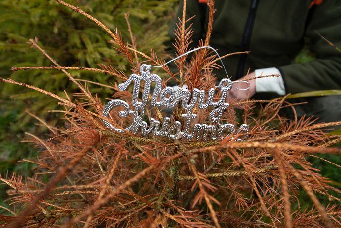 Boswachter Harco Bergman gaat er vanuit dat het evenement Mystieke kerst  zaterdag doorgaat.