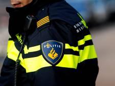 Automobilist ramt boom in Hoorn, klimt uit dakraam en verdwijnt