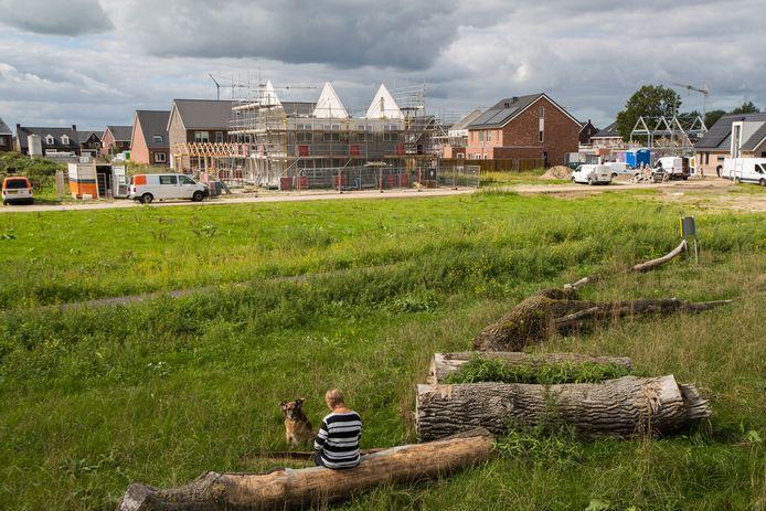 Het nieuwe park in Wijhe gaat Woeste Wijhe heten.