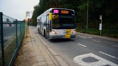 Omleiding op buslijnen 337 en 537 door wegenwerken en dorpelingenkoers