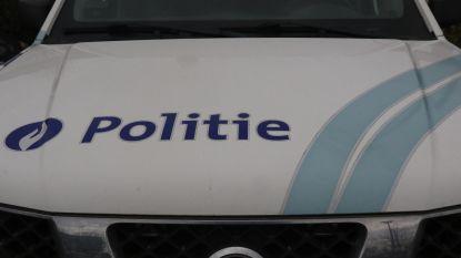 Chauffeur verwittigt politie: dertigtal transmigranten springt uit zijn truck en vlucht weg langs E313 in Tessenderlo