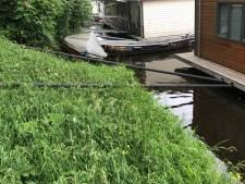 'Schippers van Kameleon' plagen woonbooteigenaren in Zwolle