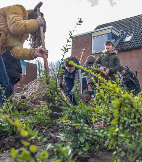 Kinderen van De Marshof vergroenen omgeving nabij school in Zwolle