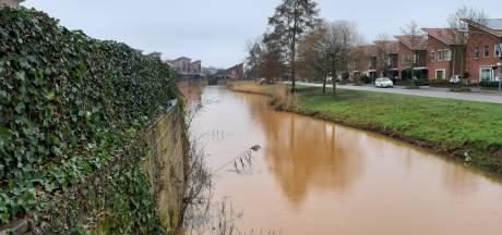 Bruin water in populaire visvijver in Almelo: hoe kan dat?