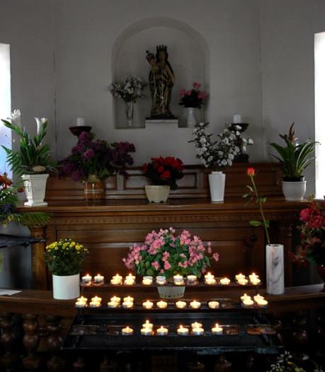 Kerken massaal open tijdens Open kerkendag; activiteiten lopen uiteen van orgelconcerten tot wandelen