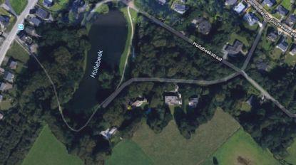 Woongebied rond Hollebeekpark wordt definitief ingekleurd als parkzone