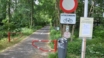 """Stad wil fietspad tussen Lokeren en Eksaarde verlichten met 'glowstuds' - natuurverenigingen dienen bezwaar in: """"Duisternis belangrijk voor verschillende diersoorten"""""""