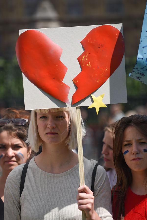 Protestanten die in de EU wilden blijven.