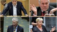 """Vlaamse fractieleiders sp.a en Groen: """"Maak van alle parlementsleden werknemers"""""""