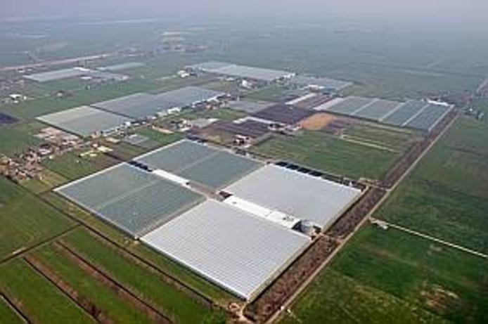 Luchtfoto van de Koekoekspolder. Rechts in beeld de Hagedoornweg.