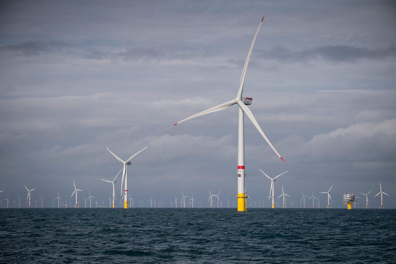 Windmolens van Eneco voor de Belgische kust.