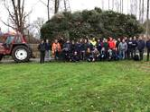 Toda zamelt ruim 600 kerstbomen in Rijssen in
