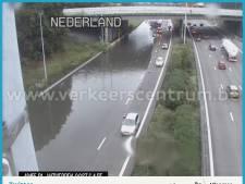 Snelweg rondom Antwerpen vanuit richting Breda niet meer onder water door hevige regenval