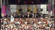 Amerikaanse band komt na 30 jaar terug: 'Beach Boys zijn Knokke nooit vergeten'