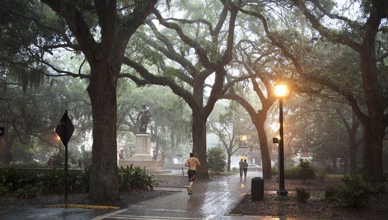 HetChippewapplein, waar Forrest Gump op het beroemde bankje zijn levensverhaal deed. Savannah is rijk aan beschaduwde pleinen met antieke lantaarns. Beeld Els Zweerink