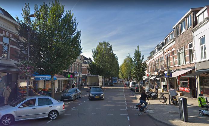 De Kanaalstraat staat vol met iepen.