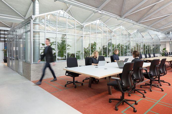 Het hoofdkantoor van CBRE in Amsterdam. De vastgoedspecialist betrok het pand, een voormalige Peugeot-garage, vorig jaar en wilde er zelf de toon mee zetten: zo ziet het kantoor van de toekomst eruit.