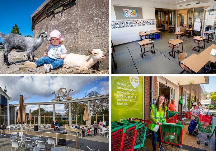 Kinderboerderij De Kerkestee in Hellevoetsluis is open, de scholen beginnen weer, de terrassen gaan open en de desinfecterende winkelmeisjes poetsen voort.
