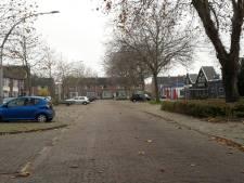 Marktstraat in 's-Heerenhoek wordt groener en gezelliger