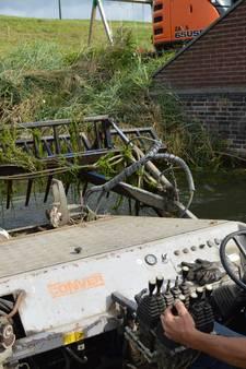 Haven in Tholen weer verlost van fonteinkruid