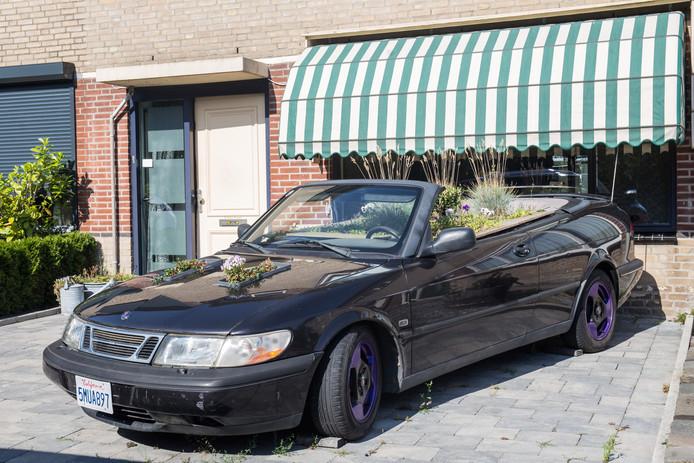 De Saab cabrio als een plantenbak...