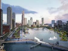 Stadsstrand is nog geen zekerheid in de nieuwe Rijnhaven