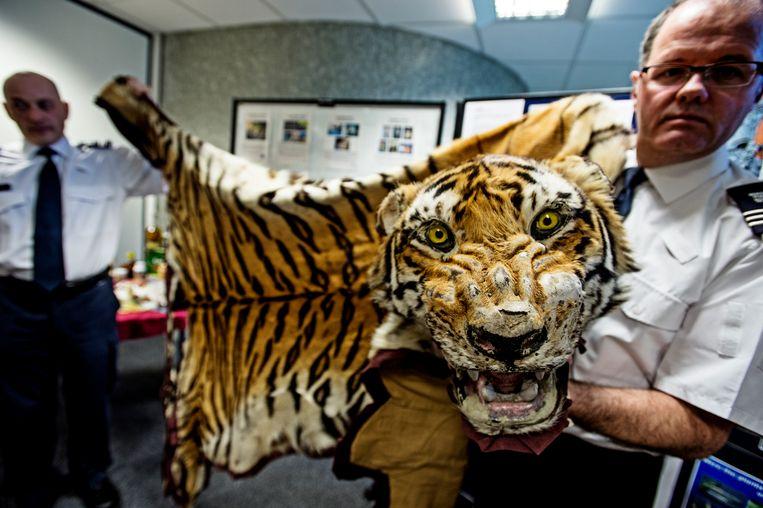 Een tijger als slachtoffer van handel. Beeld null