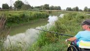 Vissen is binnenkort weer toegelaten in Paddenbroek