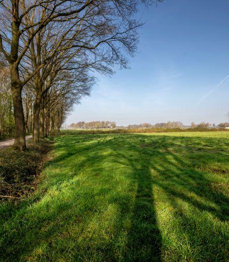 Vele paden door De Groene Long in Bladel