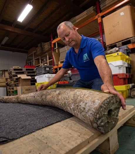 Bijzondere bijvangst van viskotter belandt op Urk: '120.000 jaar oud, spectaculair!'