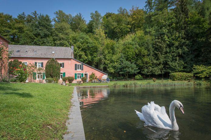 Vakantiehuis in Orval voor 12 personen in de Ardennen, zie punt 5.