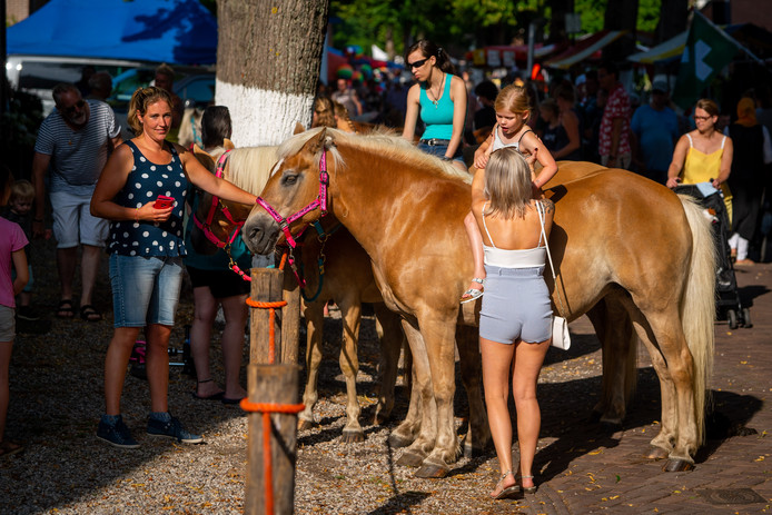 Pony's op de paardenmarkt in Alblasserdam.