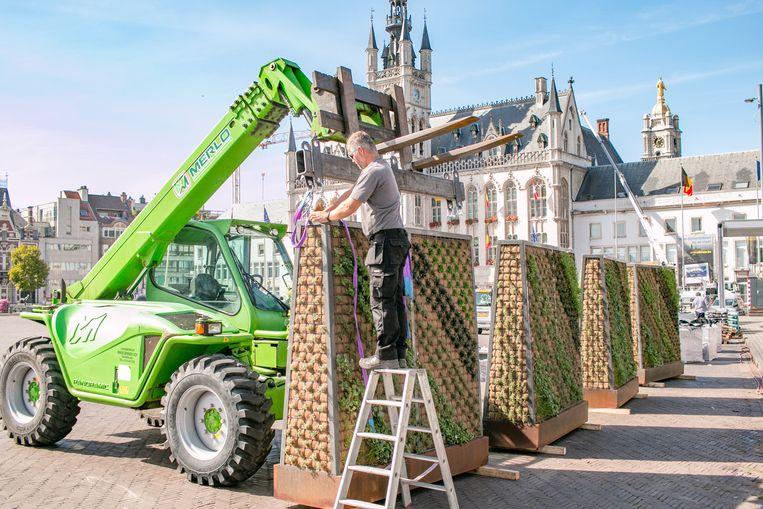 Tien nieuwe groene zitelementen met verticale wanden worden op de Grote Markt geplaatst.