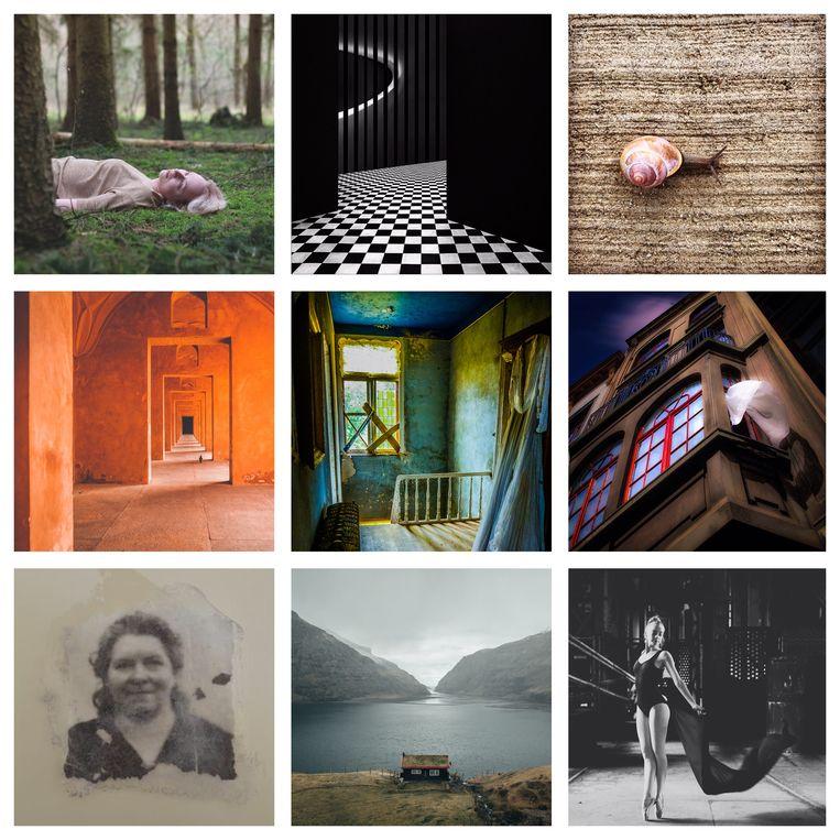 Enkele werken die je kunt bewonderen tijdens de expo.