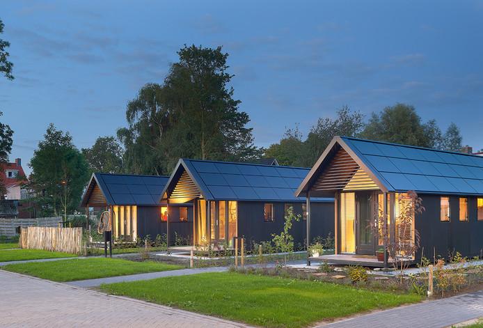 Tiny houses die het bedrijf Mill Home eerder in het Friese Hardegaryp heeft gebouwd