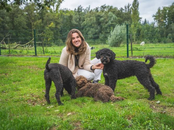 """Laura (27) kan honden opleiden om corona te detecteren: """"100 procent sluitend? Nee, maar dat zijn medische testen ook niet"""""""