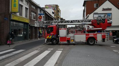 Nekkerspoel opgeschrikt door vals brandalarm
